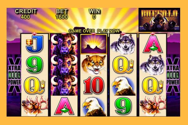 buffalo-aristocrat-online-casino-slots800